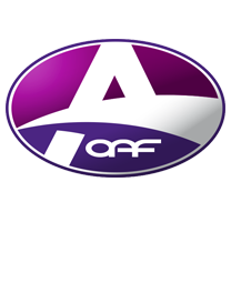 OAF Holland dak en goot Olst